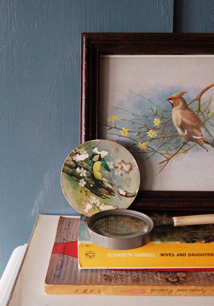 curate your space bird print and coaster