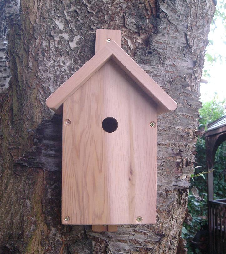 Birdhouse_with_Camera