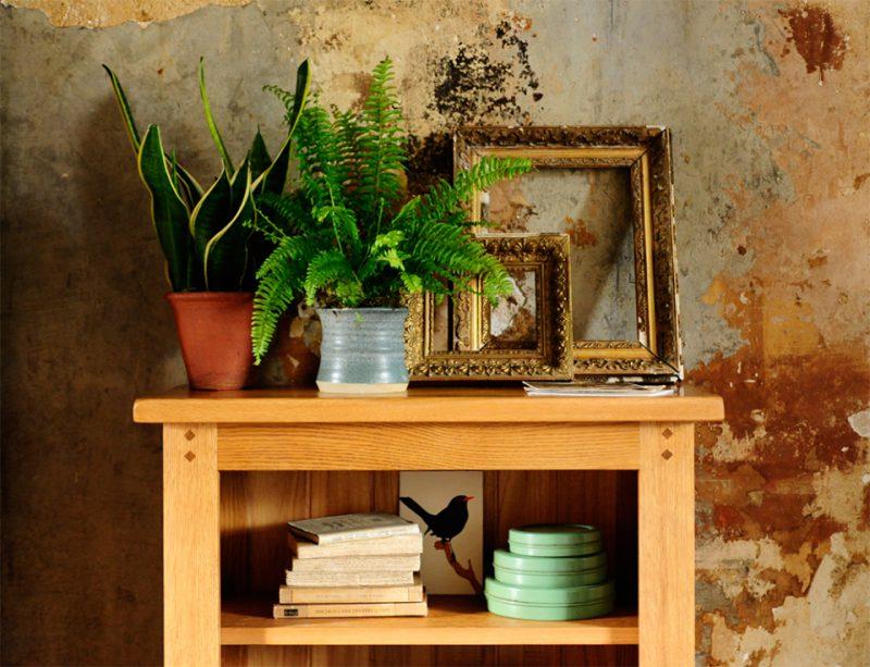 Oak bookcase, rustic oak, rustic wall, antique golden frames, blue pottery, fern2