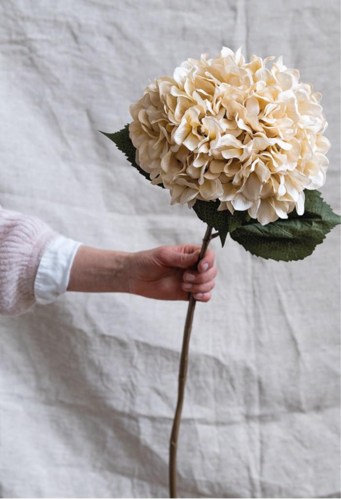 Cotswold Company antique cream hydrangea stem, faux flowers